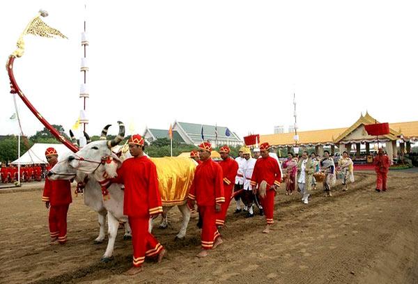 วันพืชมงคล (Royal Ploughing Ceremony)